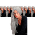 Wicked Straight Wig Grey 24 Inch Dozen 6048D