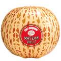Inflatable Matzah Ball 9202