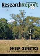 Research Report 76: Sheep genetics
