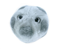 GIANT Microbes HPV stuffed virus.