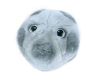 GIANT Microbes HPV stuffed virus.