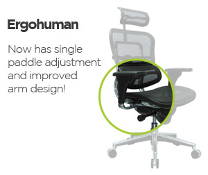 Ergohuman Chair LEM6ERGLO - Low Back with Leather Seat and Mesh ...