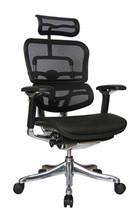 Raynor Ergohuman V2 Chair V200HRBLK
