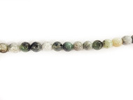 Burmese Jade Rounds 14mm - By The Strand