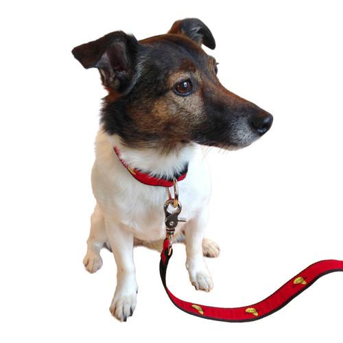 Mount Gay®Rum Dog Collar
