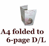 A4 folded to 6-panel D/L double-sided leaflets/brochures