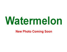 Watermelon - 5 Gallon Bag