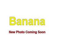 Banana - 5 Gallon Bag