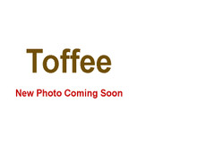 Toffee - 5 Gallon Bag