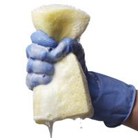 sponge-650.jpg