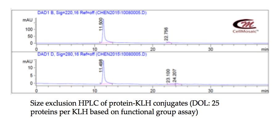 bc0009-protein-klh.jpg