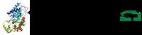 HRP-oligo conjugate through thiol ether formation