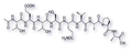 Rhodopsin Nonapeptide (C1'-C9')