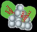 SepSphere™ Peptide Immobilization Kit
