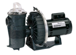 Pentair Challenger Pool Pump 1 HP