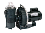 Pentair Challenger Pool Pump 3 HP