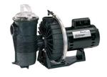 Pentair Challenger Pool Pump 3 HP