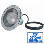 Pentair Amerlite Pool Light 12V 300W with 50ft Cord