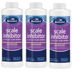 BioGuard Swimming Pool Scale Inhibitor 32 oz - 3 Pack