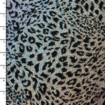 Black on Silver Leopard Flocked Holographic 4-way Stretch Mystique