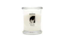 The scent is a lovely combination of gardenia, cucumber and a touch of white musk.