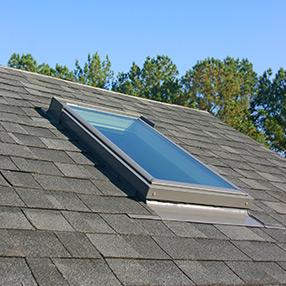 skylight-roof-trees.20150428.jpg