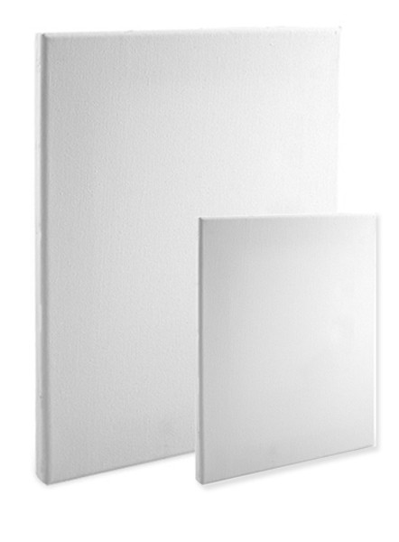 Econo  White Canvas