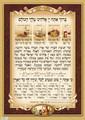 """Laminated Poster 20"""" x 28""""-- Bracha Achrona (P441)"""