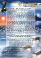 "Laminated Poster 20"" x 28""-- Nishmas (P632)"