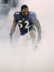 Pre-Order Ray Lewis 8x10 B
