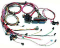 GM Style LS 1 Engine Harness