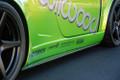 818 Carbon Fiber Rocker Extensions