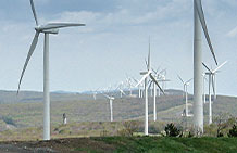 Photo of Wind Turbines.