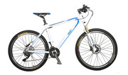 invisiTRON M1 Electric Bike Mountain Sports
