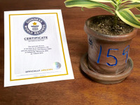 World Record Planter #159/159 and Certificate of Authenticity with 20% Donation from Cherrico Pottery
