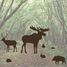Forest Animal Woods Wall Decal Set Moose Mouse Bunny #1253