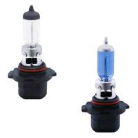 H10 Halogen Headlight Bulbs