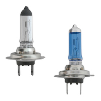 H7 Halogen Headlight Bulbs