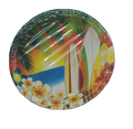 Hawaii Luau Tropical Surfing Party Large 9 Inch Round Lunch Dinner Plates