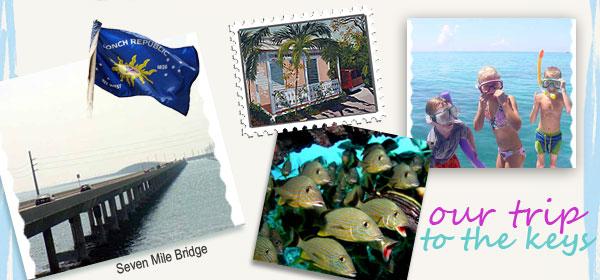 shell decor, tropical decor, beach decor, caribbean decor, nautical decor