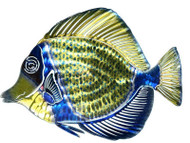 3D Blue Angelfish Metal Wall Art