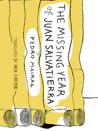 The Missing Year of Juan Salvatierra-Paperback