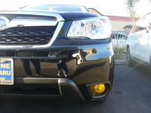 Precut Yellow Fog Light Overlays Tint Kit (14-16 Fozzy)