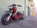 Buy Online - 2013 Icebear MADDOG Lowrider (Honda Ruckus Clone) Stretch Scooter Moped - 50cc - USA Shipping