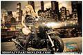 $1499 ICEBEAR HONDA RUCKUS CLONE 2013 MADDOG Scooter Moped LOWRIDER STRETCH- PMZ50-19