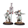 Warmachine Ret Dawnguard Invictor Officer & St