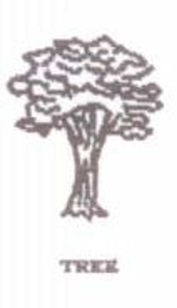 celebrate nature with our tree design