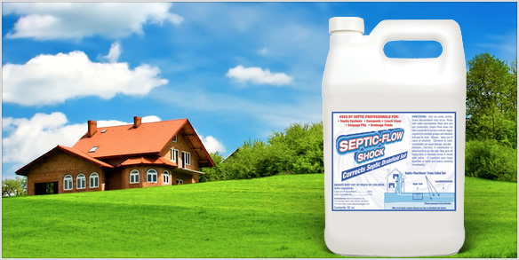 septic-flow-shock-clean-house-gallon.jpg