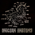 UNICORN ANATOMY