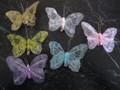 Net and Glitter Butterfly